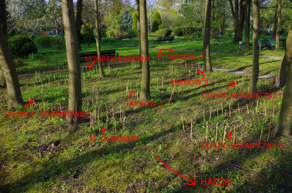Ogród doświadczalny Uniwersytetu Jagiellońskiego