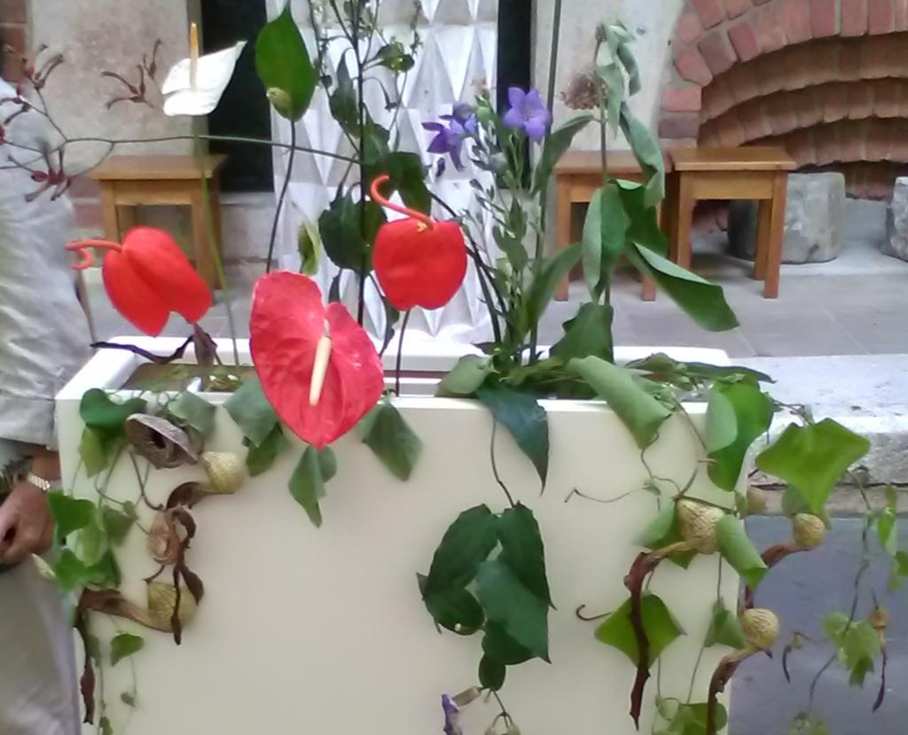 Komu potrzebne są kwiaty ich barwy, kształty, zapach, produkcja nektaru?