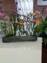 bohaterowie wykładu-rośliny1